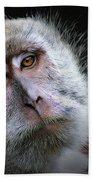 A Monkey's Look Beach Sheet