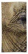 A Mothers Eye Beach Towel