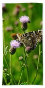 A Painted Lady Beach Towel