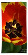 A Painting Red Tulip Beach Towel