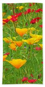 A Painting Tuscan Poppies Beach Towel