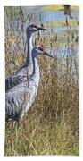 A Pair Of Sandhill Cranes Beach Towel