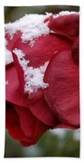 A Passing Unrequited - Rose In Winter Beach Towel