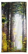 A Path In The Pines Beach Towel