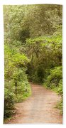 A Path To The Redwoods Beach Towel