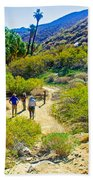 A Pause On Lower Palm Canyon Trail In Indian Canyons Near Palm Springs-california Beach Towel
