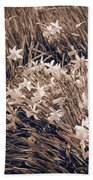 Clusters Of Daffodils In Sepia Beach Towel