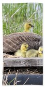 A Real Mother Goose Beach Towel