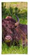 A Resting Bison Beach Towel