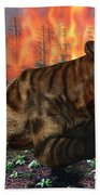 A Saber-toothed Tiger Running Away Beach Towel