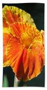 A Single Orange Lily Beach Towel