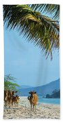 A Small Herd Of Cows Beach Towel