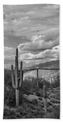 A Sonoran Winter Day In Black And White  Beach Towel