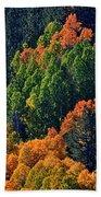 A Splash Of Color Beach Towel