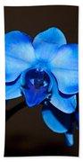 A Stem Of Beautiful Blue Orchids Beach Towel