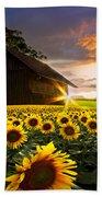 A Sunflower Moment Beach Towel