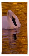 A Swan On Golden Waters Beach Towel