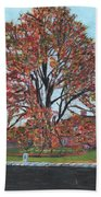 A Tree In Sherborn Beach Towel