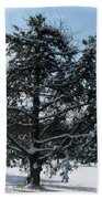 A Tree In Winter Beach Towel