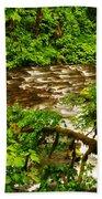 A View Of Eagle Creek Beach Towel
