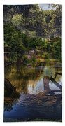 A View Of The Nature Center Merged Image Beach Towel