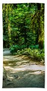 Pathway Cathedral Grove Beach Towel