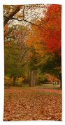 A Walk In Autumn - Holmdel Park Beach Towel