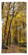 A Walk In The Dune Land Forest Beach Towel