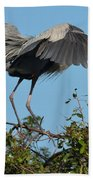 A Winged Stance Beach Towel