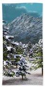 A Winter Scene... Beach Towel
