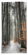 A Winters Path Beach Towel by Bill Wakeley