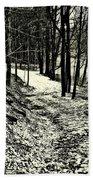 A Winter's Trail Beach Towel