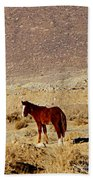 A Young Mustang Beach Towel