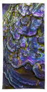 Abalone Shell 6 Beach Towel