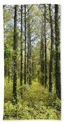 Abandoned Forest In Scott Arkansas Beach Towel