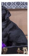 Abby Beach Towel