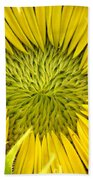 About To Be A Sunflower Beach Towel