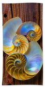 Abstract Chambered Nautilus Beach Towel