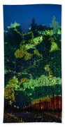Abstract Colorful Light Projection On Trees Beach Towel