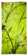 Abstract Pond Scum Beach Towel