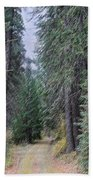 Abstract Road In The Wilderness Beach Towel