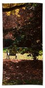 Adirondack Chairs-3 - Davidson College Beach Towel