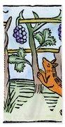 Aesop The Fox & The Grapes Beach Towel