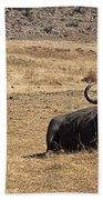 African Buffalo V2 Beach Towel