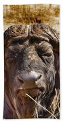 African Buffalo V3 Beach Towel