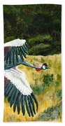 African Crowned Crane Painting Beach Towel