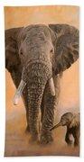 African Elephants Beach Towel by David Stribbling