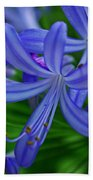 African Lily Beach Towel