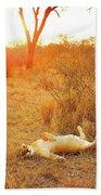 African Mammals Beach Towel