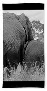 African Safari Elephants 3 Beach Towel
